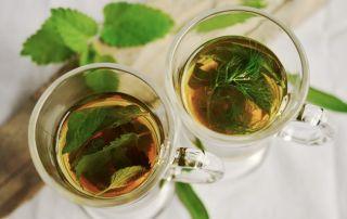 Herbal Tea Herbs Tee Mint 159203